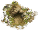 Wildlife Cave (easy)