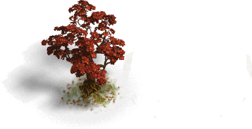 Slim Red Tree